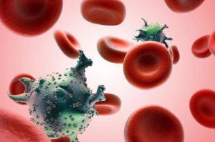 صورة كم يعيش فيروس الايدز على شفرة الحلاقة , كم مده يعيش فيها فيرس الايدز على شفره الحلاقه الملوثه بالمرض
