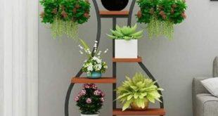صورة تنسيق نباتات الزينة , لم ارى مثل هذه الافكار الرائعة من قبل
