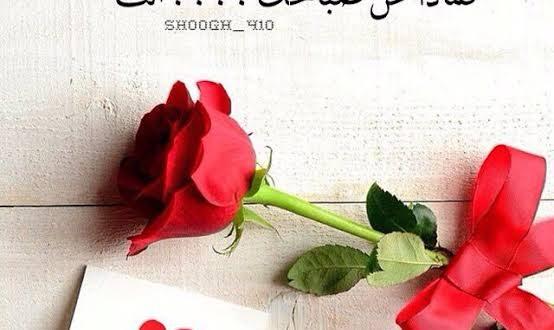 صورة كلام عن صباح الحب , صباح الحب لاغلى قلب