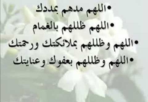 صورة دعاء لاخواننا في سوريا , اللهم ارزقهم الامن و الامان