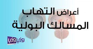 علاج التهاب المسالك البولية للرجال , اعراض التهاب المسالك البوليه الذكوريه وعلاجها