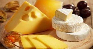 صورة سعر الجبنة الرومى , من اجمل انواع الجبن اعرف سعرها اليوم 642 2.jpeg 310x165