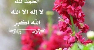 صورة صور سبحان الله , اجمل الكلام ذكر الله