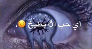 صورة اى حب اى بطيخ , محمد السالم