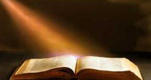 صورة معنى كلمة مقدس , بعض معاني الكلمات هنا