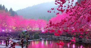 صورة مناظر طبيعيه جميله , صور طبيعية تحفة