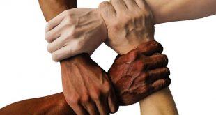 صورة قصيدة عن التعاون , لا يعيش المرء بمفرده