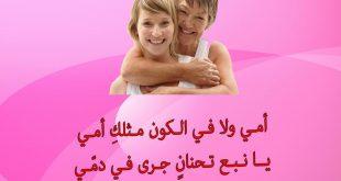 صورة رسائل عن الام , امي هي كل الحياه