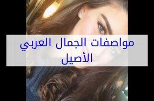 صورة مواصفات الجمال العربي الاصيل , جمال العرب لا مثيل له