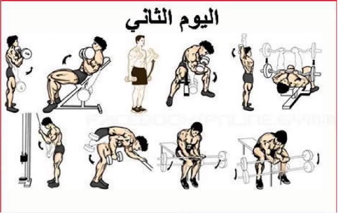 صورة تمارين رياضة كمال الاجسام , شروط يجب مراعاتها قبل التمارين الرياضية