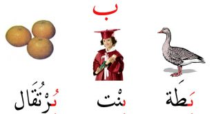 صورة اشياء بحرف الباء ، حروف مهمة تستخدم باستمرار