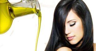 كيف استعمل زيت الزيتون للشعر , وصفة سحرية للشعر