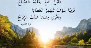 صورة من روائع الشعر العربي , مقتطفات من الادب العربي