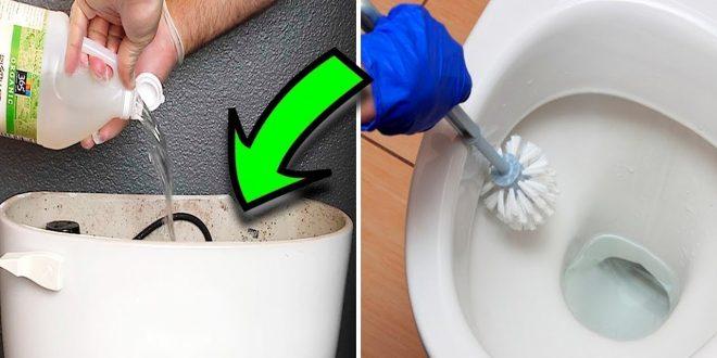 صورة تنظيف الحمام بالخل ، للحصول على حمام خالي من البكتيريا