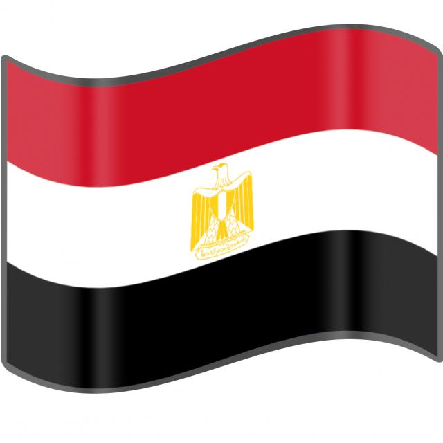 صورة صورة علم مصر 797 2